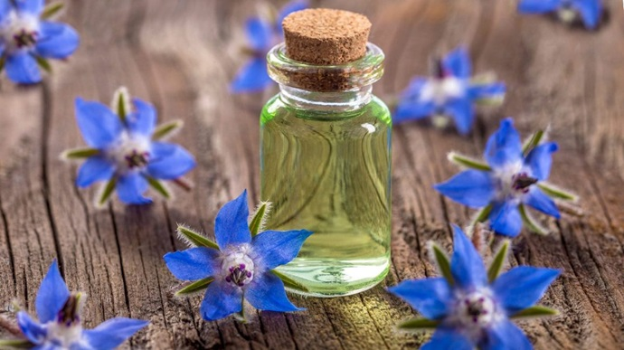 Six ways borage oil can help your skin problems