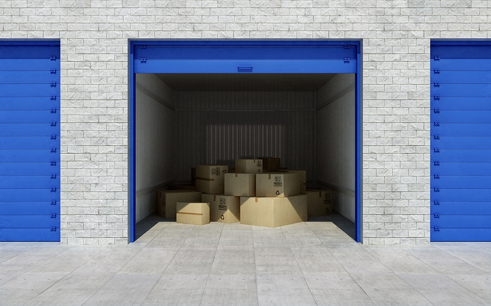 Storage Tips to Keep the Bugs and Rodents Away