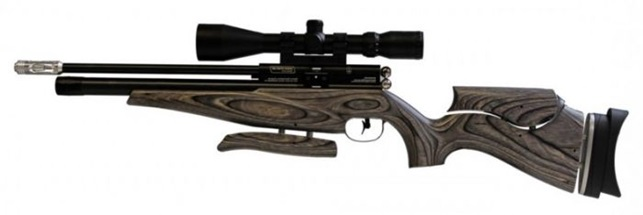 Tips to improve your Air gun shooting accuracy
