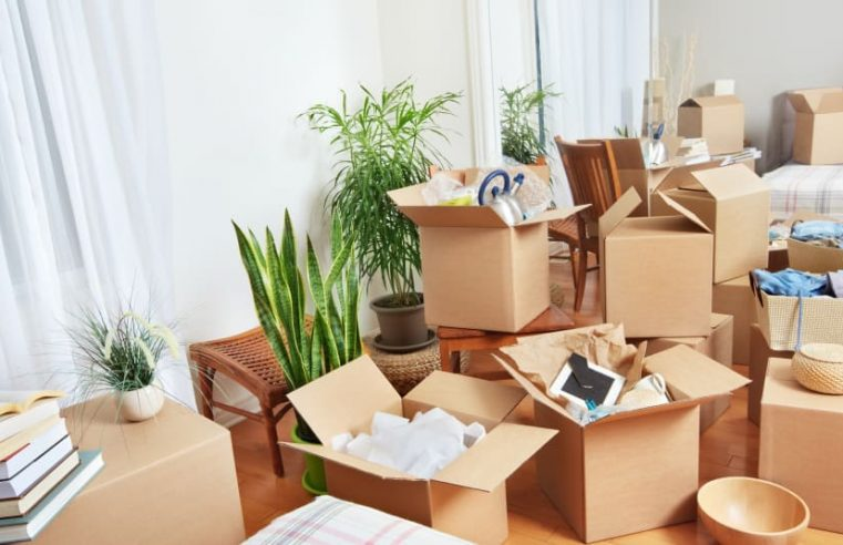Best among most reliable and efficient movers in Toronto