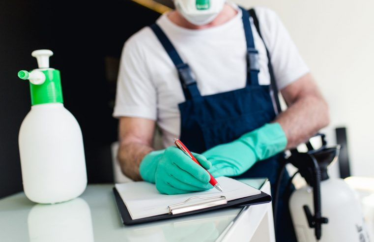 Few Things You Must Know Before Hiring a Pest Control Service