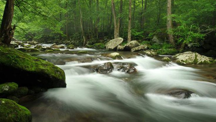 Helpful Tips On Photographing Moving Water And Get A Professional Result